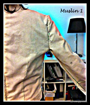 bodice back muslin 1-raised