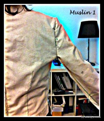 bodice back muslin 1-raised